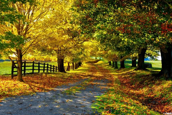 Latest_Beautiful_Roads_Wallpapers_28